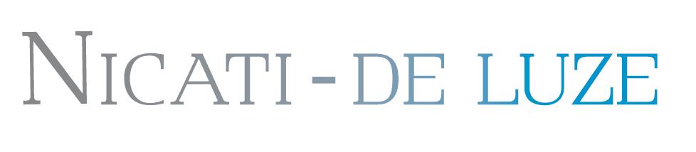 logo_nicatideluze_couleur